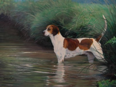 Hound Wading by Sharon Call