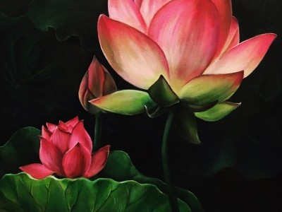 Vibrant Flower Collection, Water Lilies by Joyce Lee