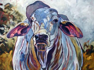 Brahman Bull, I