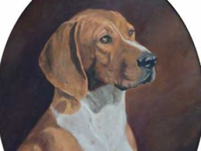 Handsome Hound by Dana Lee  Thompson