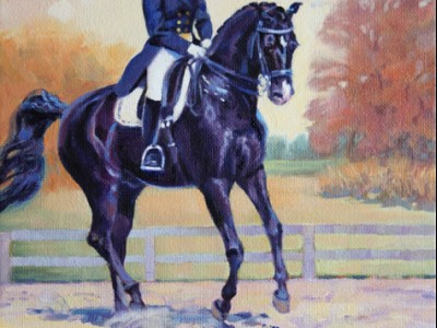 Dressage Clinic by Donna   Doyle