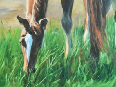 Summer Pastures by Margo   Petterson