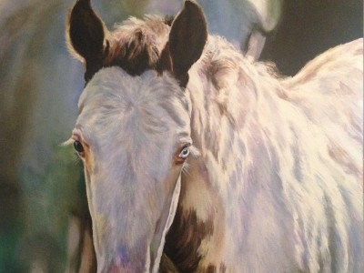 Spring Foal by Cindy Billingsley