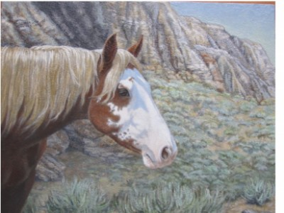 Badlands Mare by Barbara   Ellis