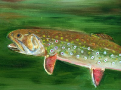 Rising Trout by Betsy Manierre