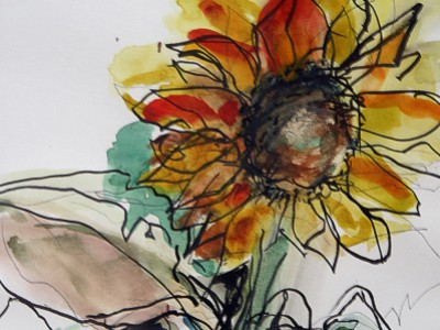 Sunflower Watercolor by Barbara A. Sharp