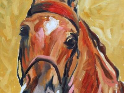 Saddlebred Study, a portrait, I