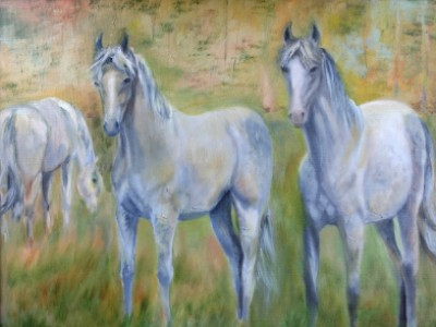 Ghost Horses by Leslie Anthony